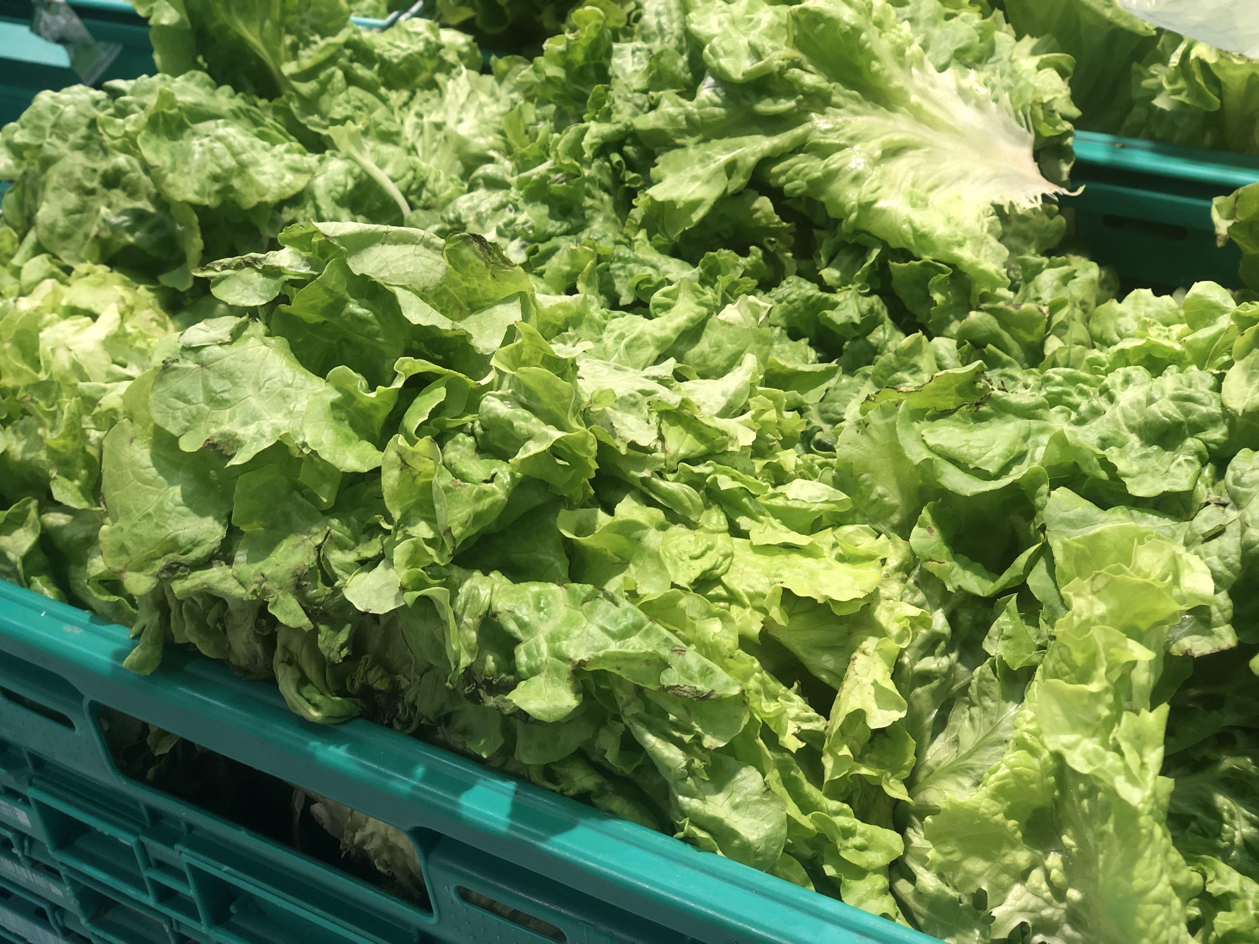 Салатные листья для салата Амели