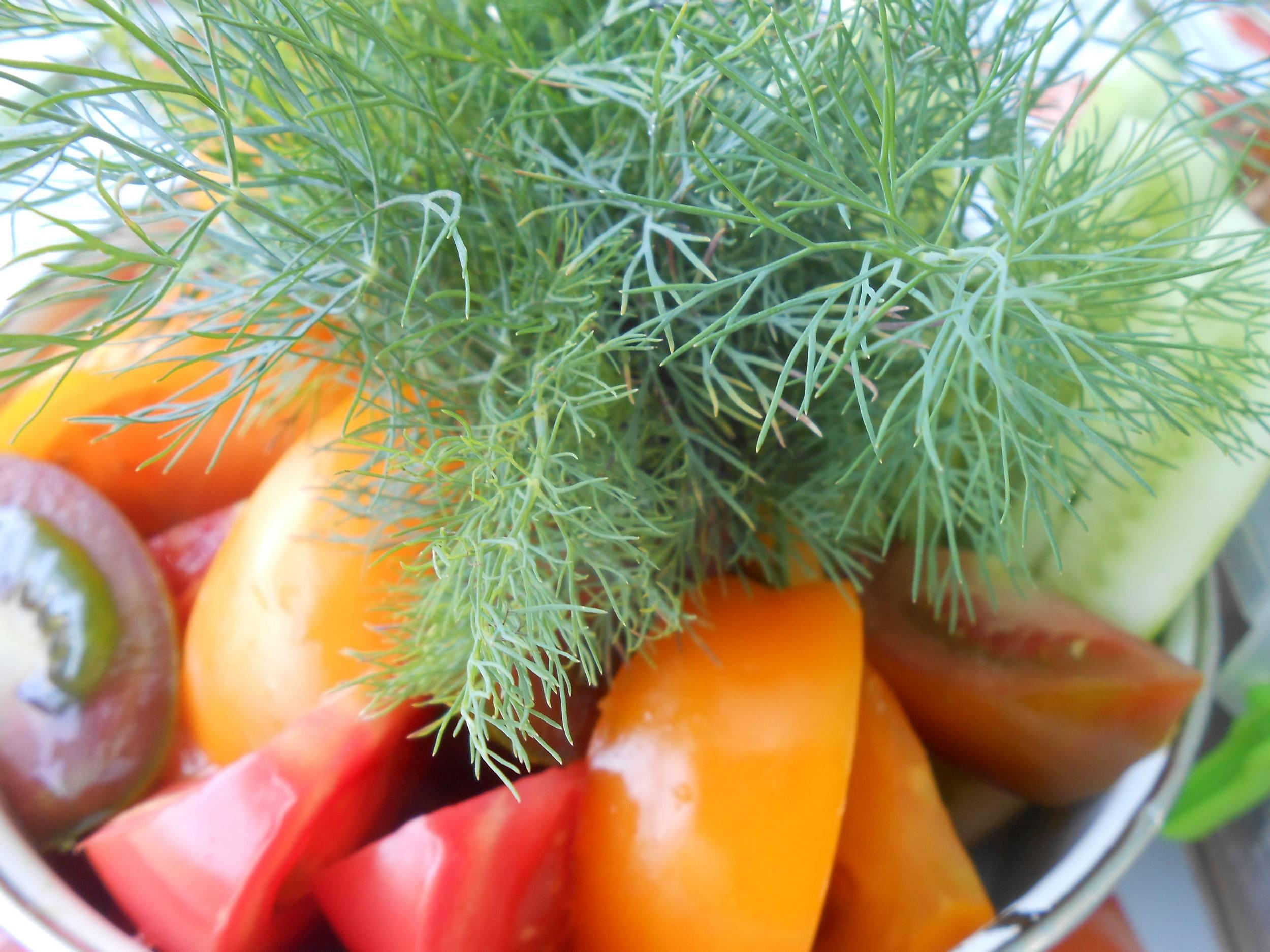Свежие овощи и укроп