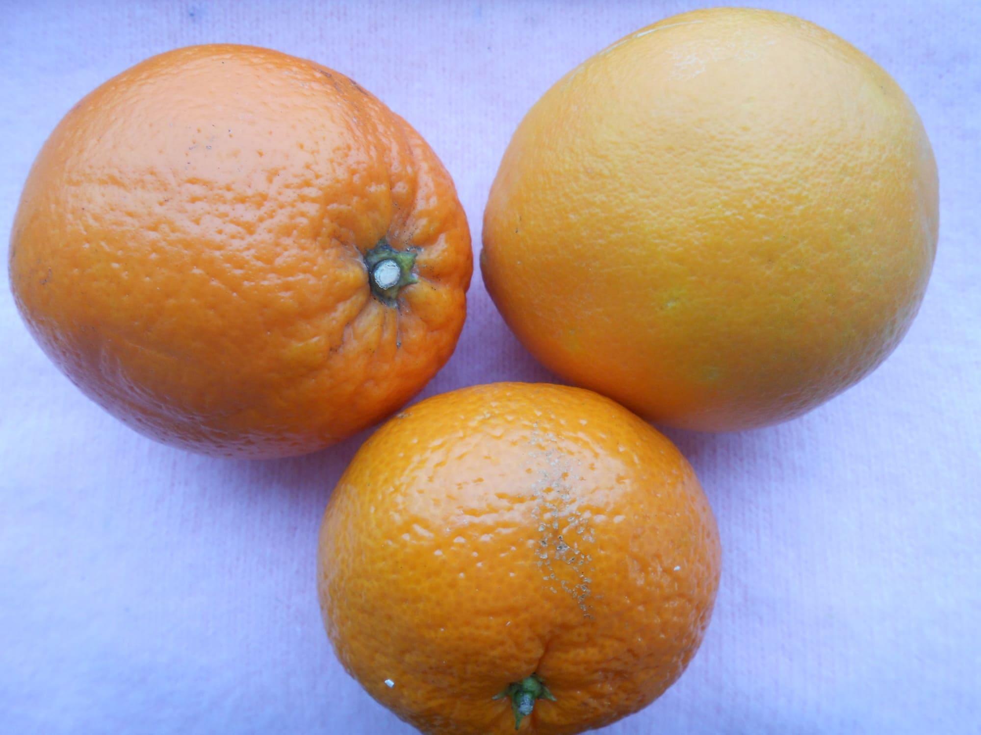 Апельсины и мандарин для маринада